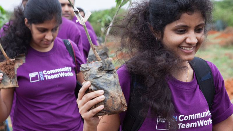 Bangalore: Trees for Free, August 2012
